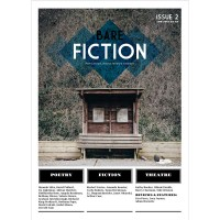 Bare Fiction Magazine Issue 2 Cover