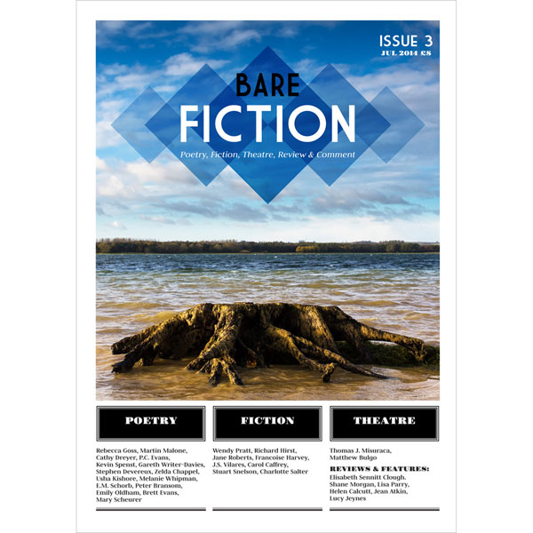 Bare Fiction Magazine Issue 3 Cover