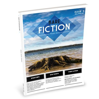 Bare Fiction Magazine Issue 3